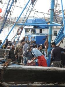 Fischereihafen von Essaouira
